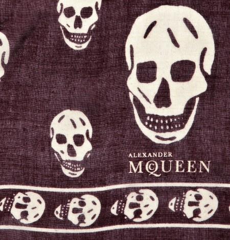 Alexander Mcqueen Skull Logo